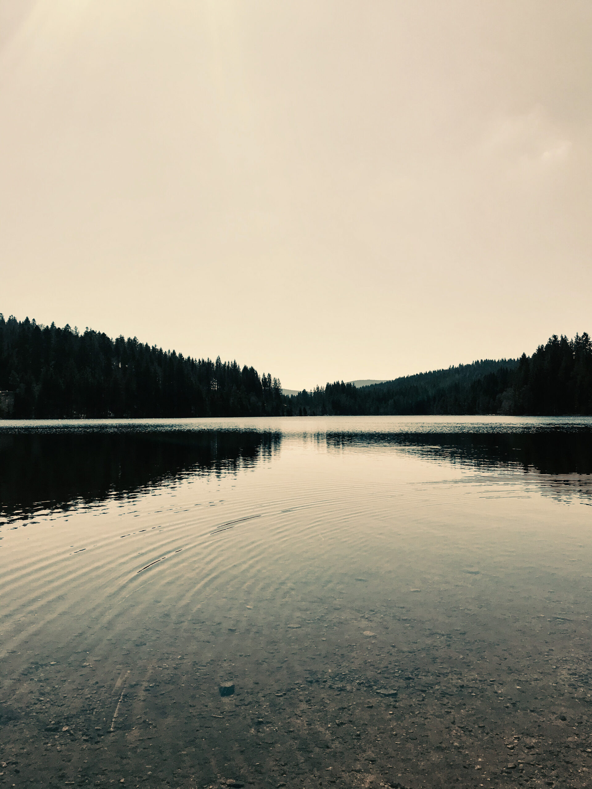 lake-windgfaellweiher-black-forest